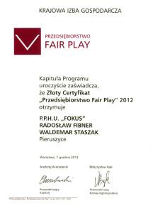 pphu fokus producent kotlow centralnego ogrzewania fair play 2012 216x300 pphu fokus producent kotlow centralnego ogrzewania fair play 2012